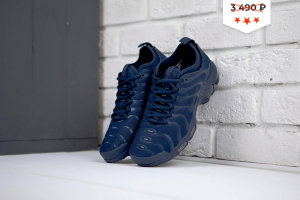 Кроссовки NIke Air Max Plus all Blue